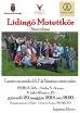 Lidingo Perugia